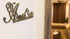 Anik Suite